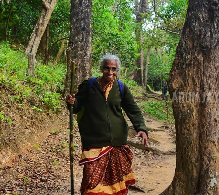 വിശാലാക്ഷിയമ്മ: അഗസ്ത്യാര്കൂടത്തെ മെരുക്കിയ മലപ്പുറത്തെ 71-കാരി